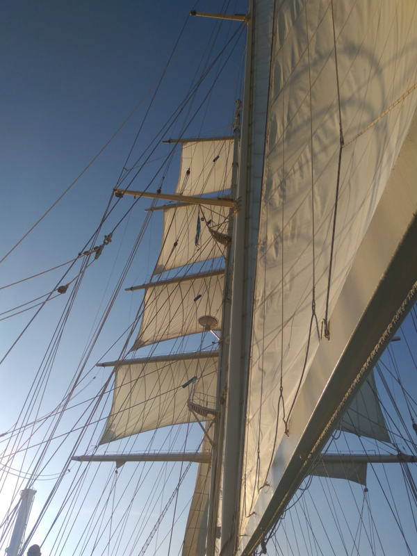 gastroystyle---starclipper---020