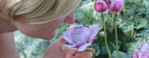 La importancia del olfato II