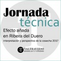 Análisis de la añada 2017 en Ribera de Duero