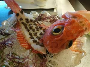 KBK… ¿hiperrealismo culinario?