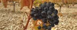 El otoño nos acoge en Valtravieso