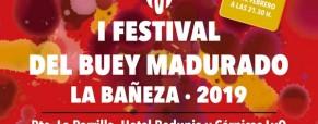 I Festival de Buey madurado en León