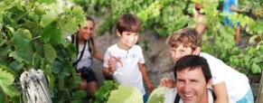 ¿Y si… regalas Vinos de Jerez?