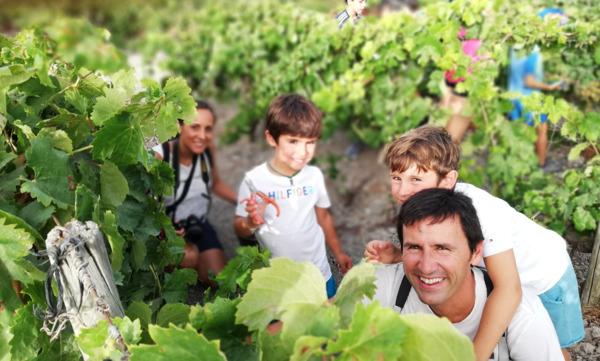Spirit Sherry, asociado de la Ruta del Vino y el Brandy del Marco de Jerez, especializada en Enoturismo rural: familia conoce la cultura del Vino de Jerez desde la Viña, cata de vinos entre cepas y aprender a venenciar. ©Spirit Sherry