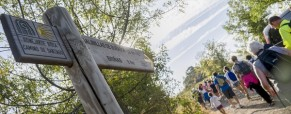 El Camino de Santigo que pasa por Rioja Alavesa