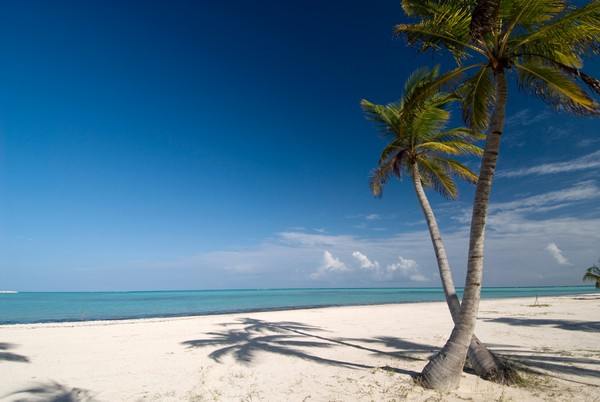 Punta Cana_002