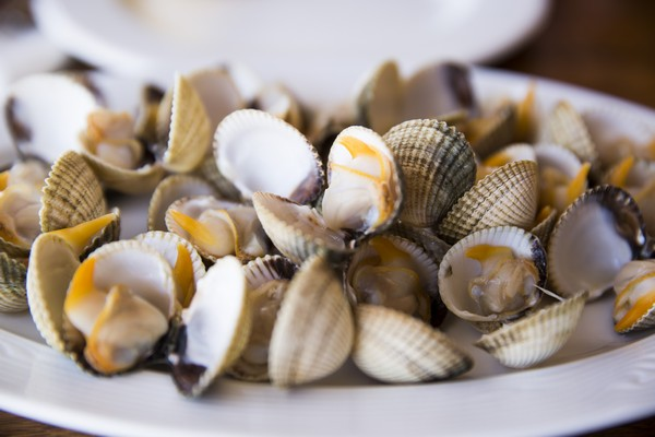 Quédate en España y descubre la gastronomía gallega