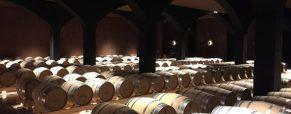 El sector vinícola en tiempos del coronavirus