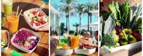 De vuelta a los orígenes de la gastronomía en Vé Café